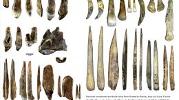 Personal Ornaments and Bone Tools