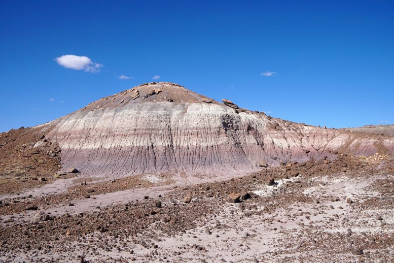 Petrified Forest National Park Rocky Outcrop