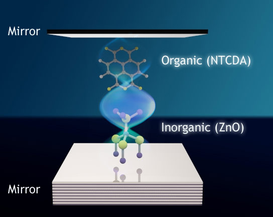 Photon Glue Enables a New Quantum Mechanical State