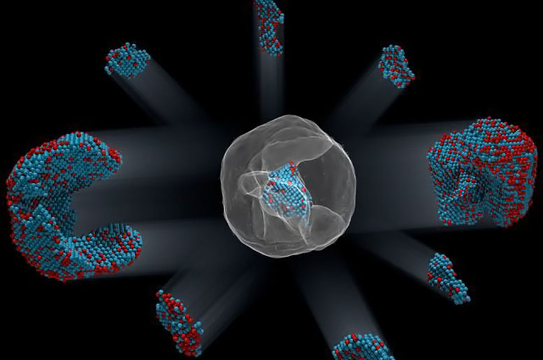 Physicists Map the Atomic Structure of an Alloy