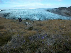 Plant Species Responding to Global Warming