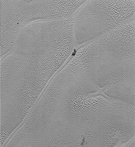 Pluto's Icy Plains from New Horizons