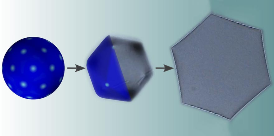 Solving The Mystery of the Pointy Droplets