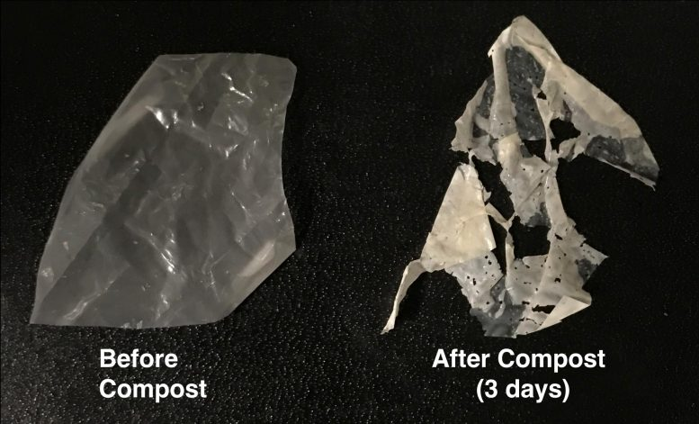 Polymer Degradation in Compost