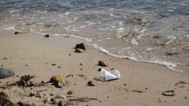 Scientists Thought It Took Thousands of Years for Plastic to Decompose – It May Only Be Decades