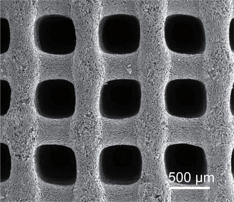 Porous Carbon Aerogel Supercapacitor