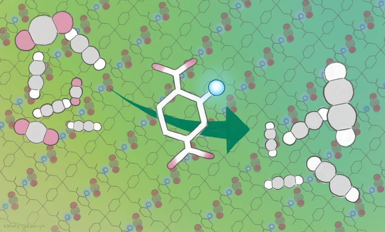 Porous Coordination Polymer Incorporated With Amino Acid