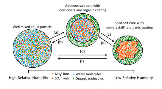 Possible phase transitions of particles containing mixtures of organic and inorganic material