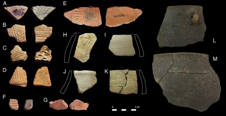 Potsherds Analyzed