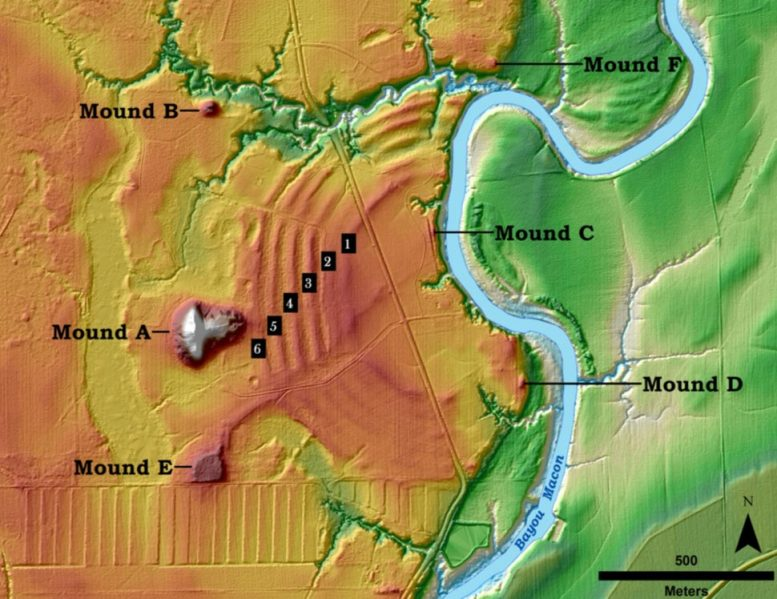 Poverty Point Core Features