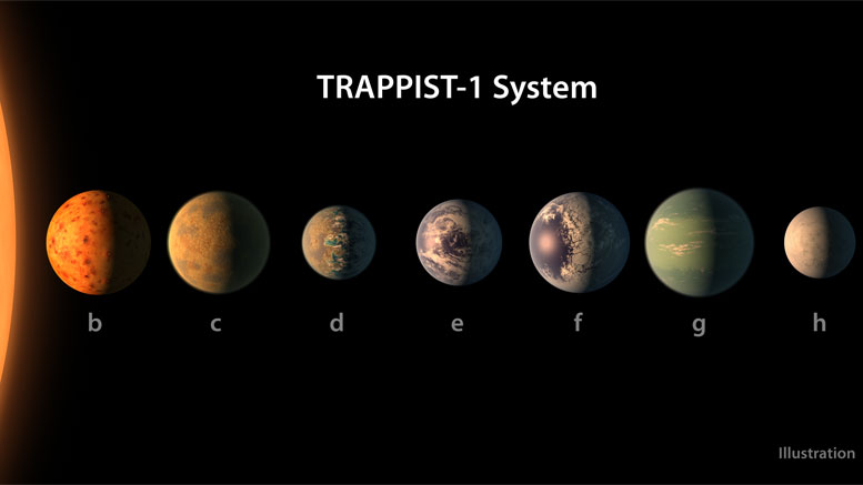 Probing the TRAPPIST-1 System with the James Webb Space Telescope