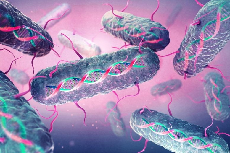 Program Memories Into Bacterial Cells by Rewriting Their DNA