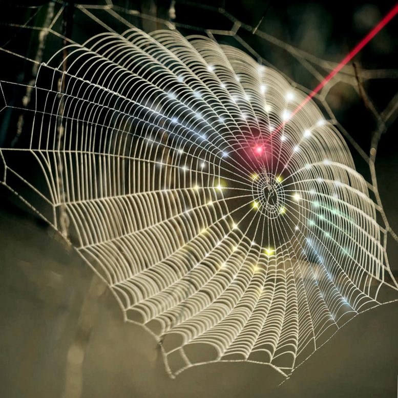 Purdue Spider Web Architecture