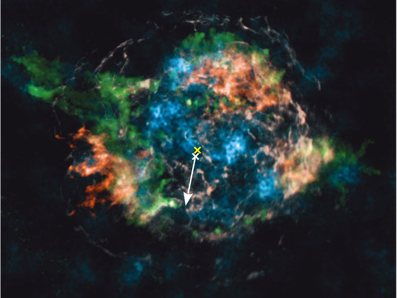 Radioactive Elements in Cassiopeia A Provide Glimpses into the Explosion of Massive Stars