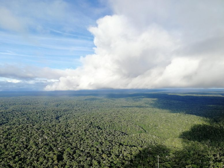 Rainclouds Moving Over the Amazon Rainforest