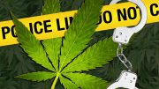 Recreational Marijuana Effect on Crime