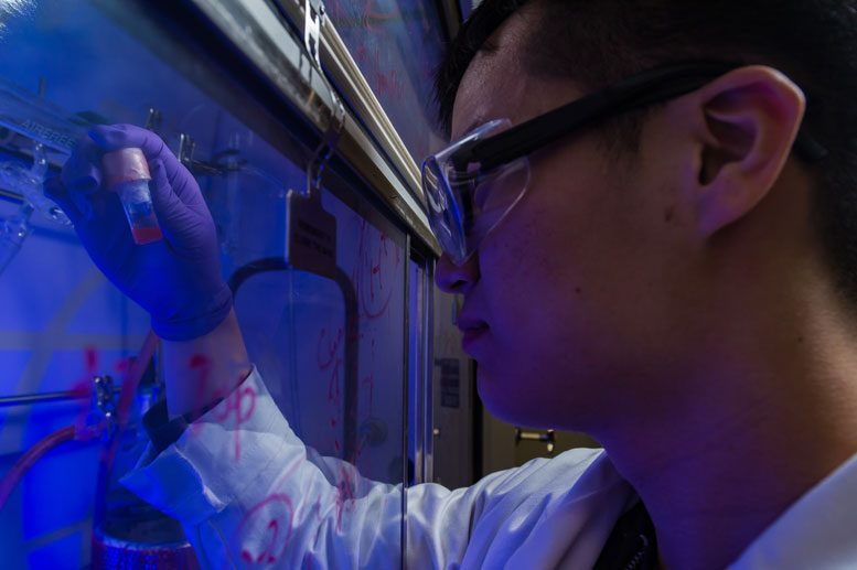 Researchers Build Functional Synthetic Polymers Using Photosensitive Quantum Dots