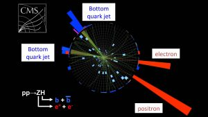 Researchers Detect Higgs Boson Decaying
