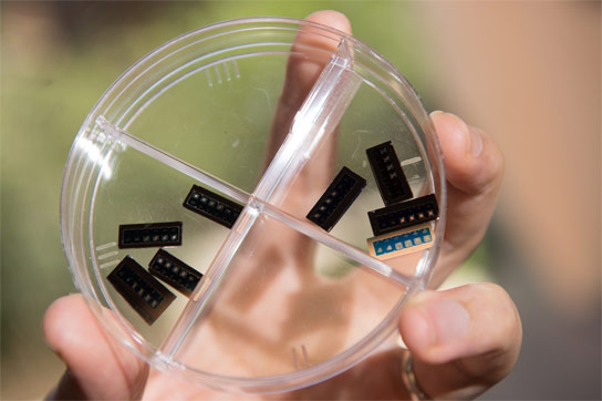 Researchers Develop 1 Kilobit Rewritable Silicon Oxide Device