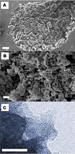 Researchers Develop Record Breaking Magnesium Carbonate Material