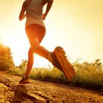 Researchers Discover Area of Brain Responsible for Exercise Motivation