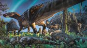 Researchers Discover Cold Weather Dinosaur Fossils