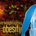 Researchers Find Clues to Preventing Weight Gain