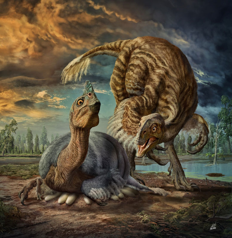Researchers Identify a New Species of Giant Birdlike Dinosaur