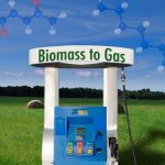 Researchers Improve Biomass to Fuel Process