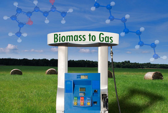 New Approach Improves Biomass-to-Fuel Process