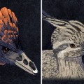 Researchers Retrace the Bird's Beak to Its Dinosaur Origins