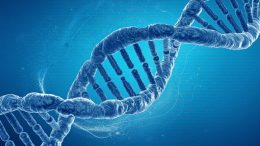 Researchers Reveal Catalog of Human Genetic Variation