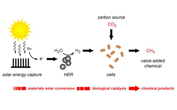Researchers Use Solar Energy and Renewable Hydrogen to Produce Methane