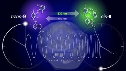 Reversible Modulation of the Circadian Clock Using Chronophotopharmacology
