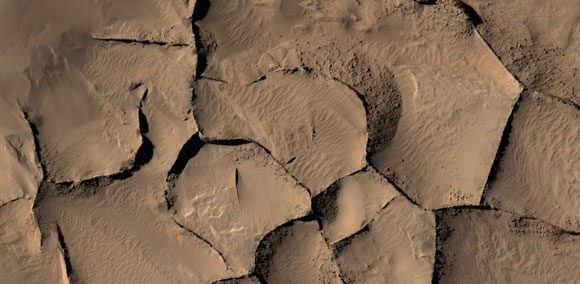 Ridges on Mars Have Diverse Origins
