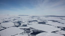 Satellite Monitoring Reveals Antarctic Ice Loss