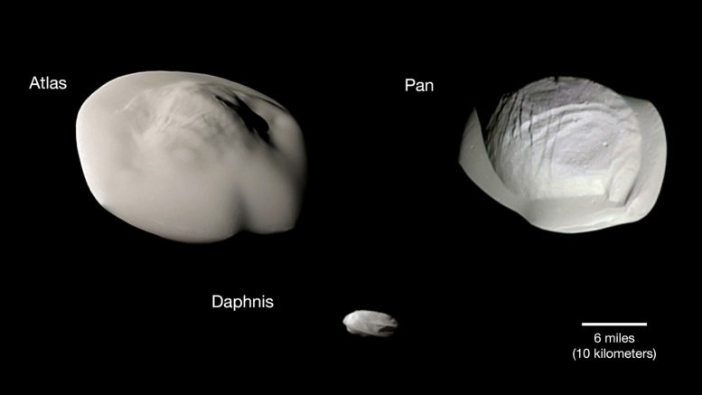 Saturn's Rings Coat Tiny Moons