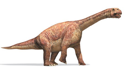http://www.physorg.com/news/2011-11-skin-bones-large-dinosaurs-survive.html