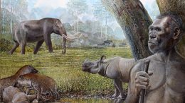 Savannah Middle Pleistocene Southeast Asia