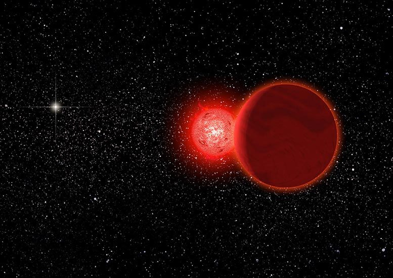 Scholz's Star and Brown Dwarf