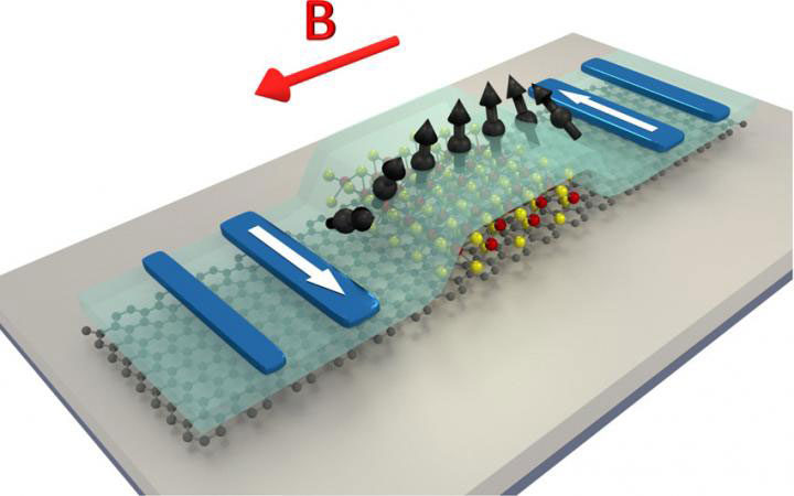 Scientists Demonstrate a Giant Spin Anisotropy in Graphene