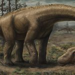 Scientists Discover New Supermassive Dinosaur Species