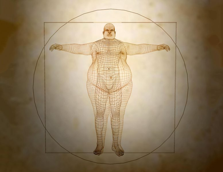 Scientists Discover Thinness Gene