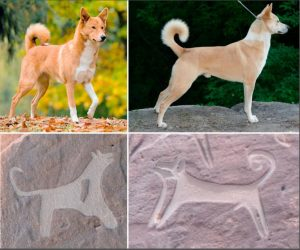 Scientists Discover the Oldest Images of Dogs on Leashes