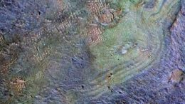 Scientists Examine What Happened to Early Mars' Atmosphere