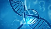 Scientists Find Missing In Action MS Genes