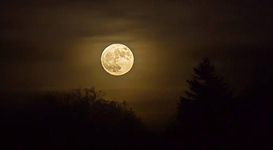 Scientists Find No Correlation Between Moon Phases and Human Sleep