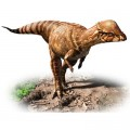 Scientists Reveal a New Species of Dinosaur