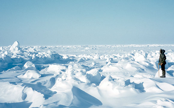 Scientists Solve the Problem of Sea Ice Thickness Distribution