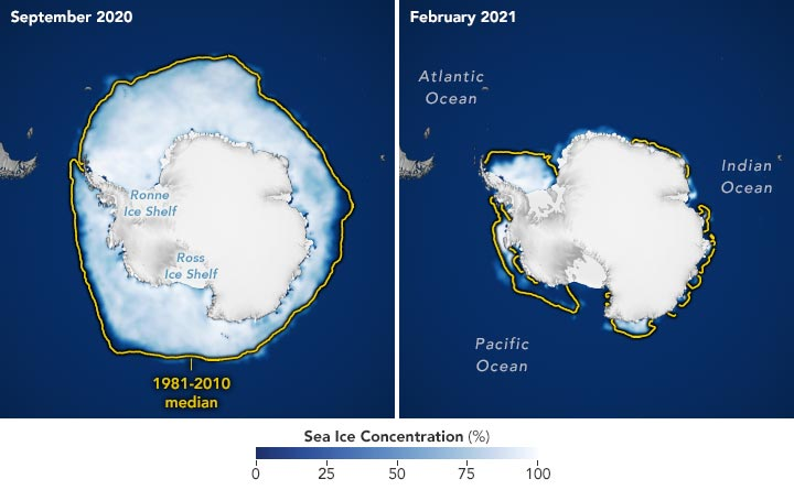 Sea Ice Concentration 2020 21